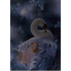 Labutia kráľovna