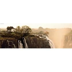 Slon na útesu - PANORAMATICKÉ PUZZLE