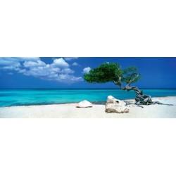 Strom na pláži - PANORAMATICKÉ PUZZLE