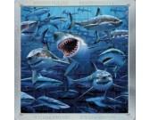 Žraloky - PUZZLE s 3D efektom