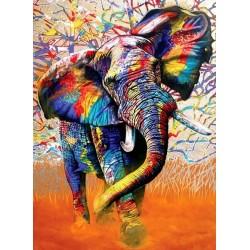 Farby Afriky