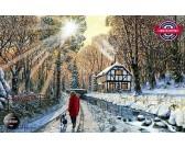 Lesná cesta v zime