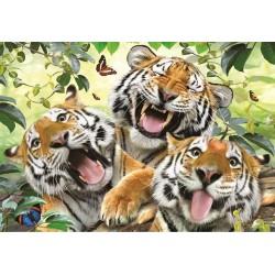 Tigrie selfie