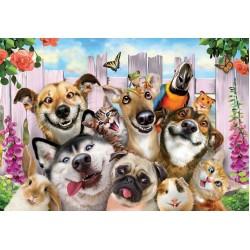 Zvieracie selfie