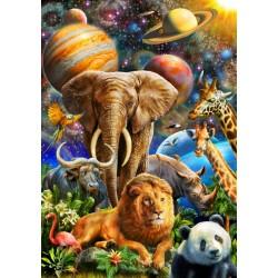 Zvieratá vo vesmíre