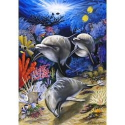 Tri delfíny na potulkách