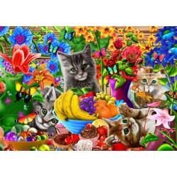 Hravé mačičky
