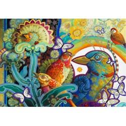 Farebné vtáky