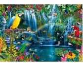 Tropické papagáje