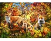 Lišky v jeseni