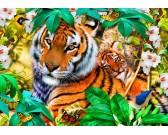 Tigre v džungli