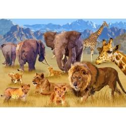 Zvieratá africkej savany