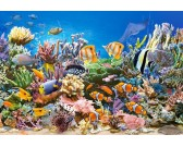 Farby oceánu - DETSKÉ PUZZLE