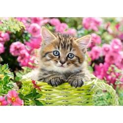 Mačiatko v záhrade - DETSKÉ PUZZLE