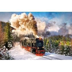 Parná lokomotíva v zime