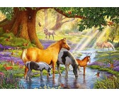 Kone u potoka