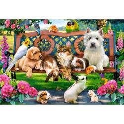Zvieratká v parku