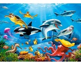 Život v tropických vodách - DETSKÉ PUZZLE