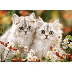 Perzské mačiatka - DETSKÉ PUZZLE