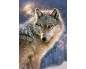 Majestátný vlk
