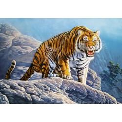 Tiger na skale