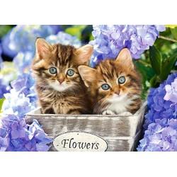 Roztomilé mačičky - DETSKÉ PUZZLE