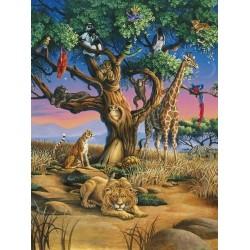 Africká divočina