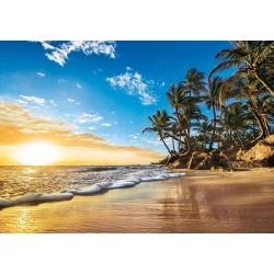 Tropický východ slnka