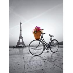 Romantická promenáda v Paríži