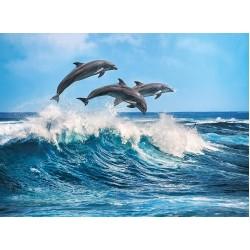 Tri delfíny