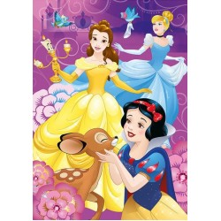 Dúhové princezné - DETSKÉ PUZZLE