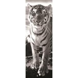 Tiger - PANORAMATICKÉ PUZZLE