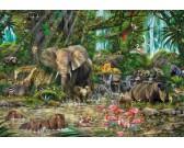 Africká džungľa