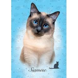 Siamská mačka - MINI PUZZLE
