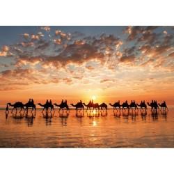 Zlatý západ slnka, Austrália