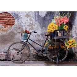 Bicykel s kvetmi