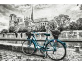 Bicykel u Notre Dame