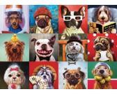 Veselé psy