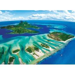 Koralové útesy