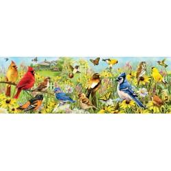 Farebné vtáčiky - PANORAMATICKÉ PUZZLE