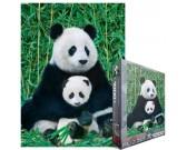 Panda s mláďatkom