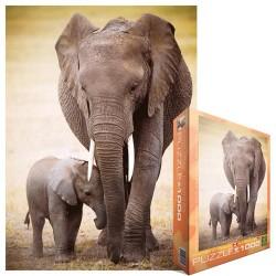 Slon s mláďaťom