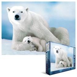 Ľadový medveď s mláďaťom
