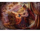 Šípková Ruženka s princom