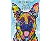 Pes nikdy neklame