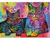 Oddané mačky