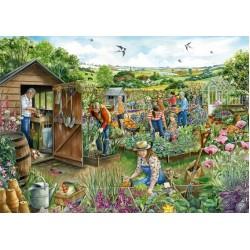 Komunitná záhrada
