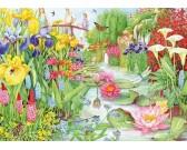 Vodná záhrada