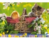 Pripraveni na piknik