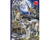 Vlky v zime
